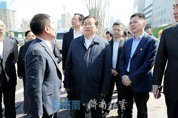 王忠林调研城市绿化提升工作