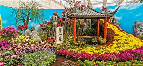 商河今年将组建花卉产业研究院 打造山东省鲜花集散地