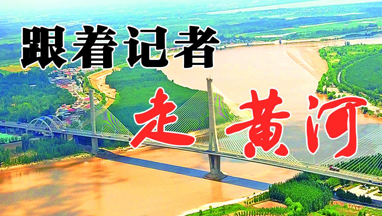 跟着记者走黄河丨第一站平阴:蜿蜒万里黄河在这里流入济南 40公里两岸玫瑰花开