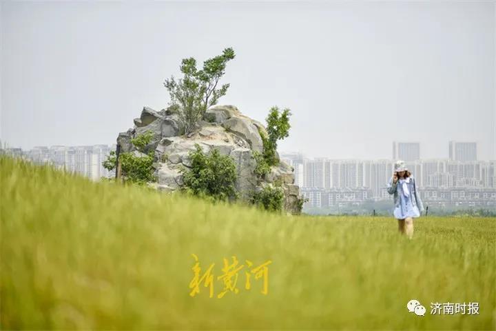 济南市区这两处网红打卡地,在朋友圈火了
